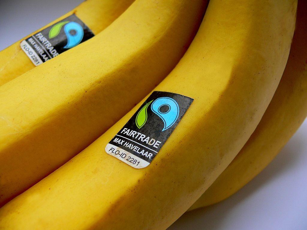 Offerta di lavoro: Fairtrade cerca un licensing officer a Padova