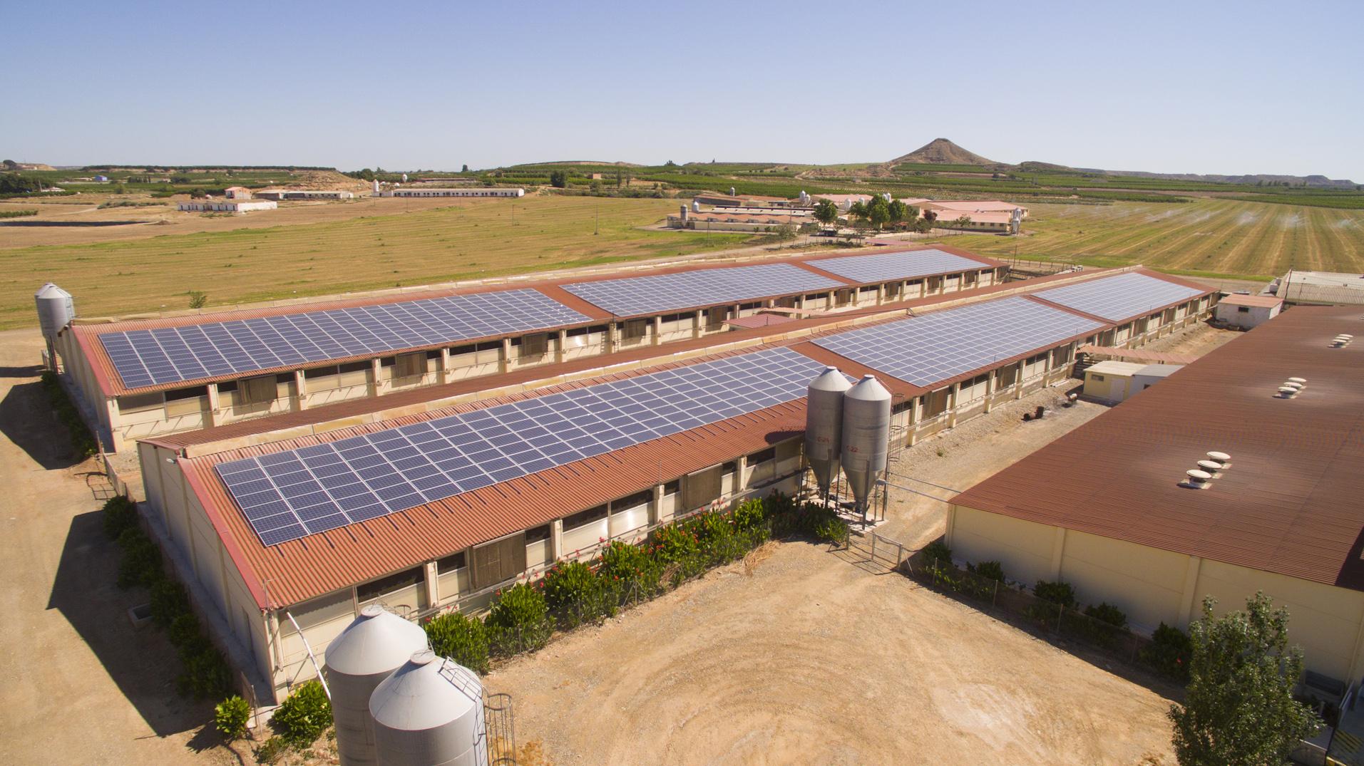 Fotovoltaico in agricoltura