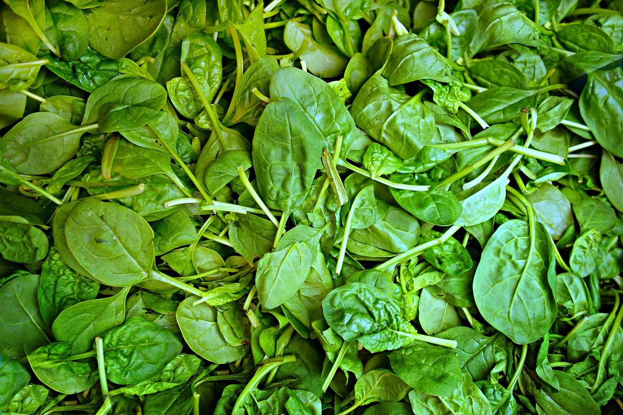 verdura spinaci insalata
