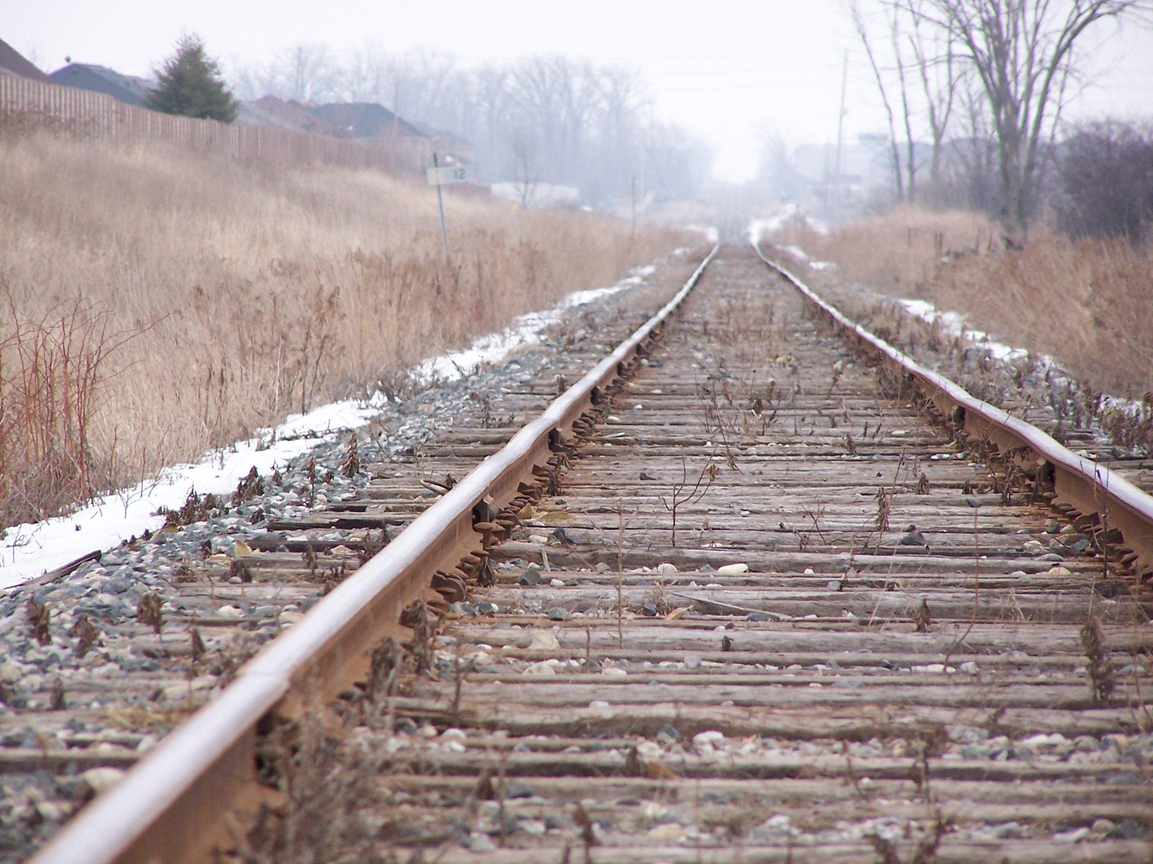 Ferrovia-alta-velocità