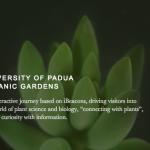 Clienti di H-ART: Orto Botanico di Padova