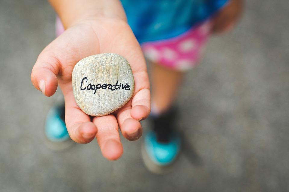 cooperative sociali