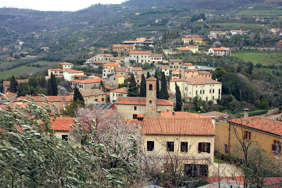 Arqua_panorama_Alessandro_Vecchi