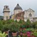 Piante antismog, a Verona si richiedono gratuitamente online